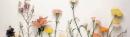 Thés floraux