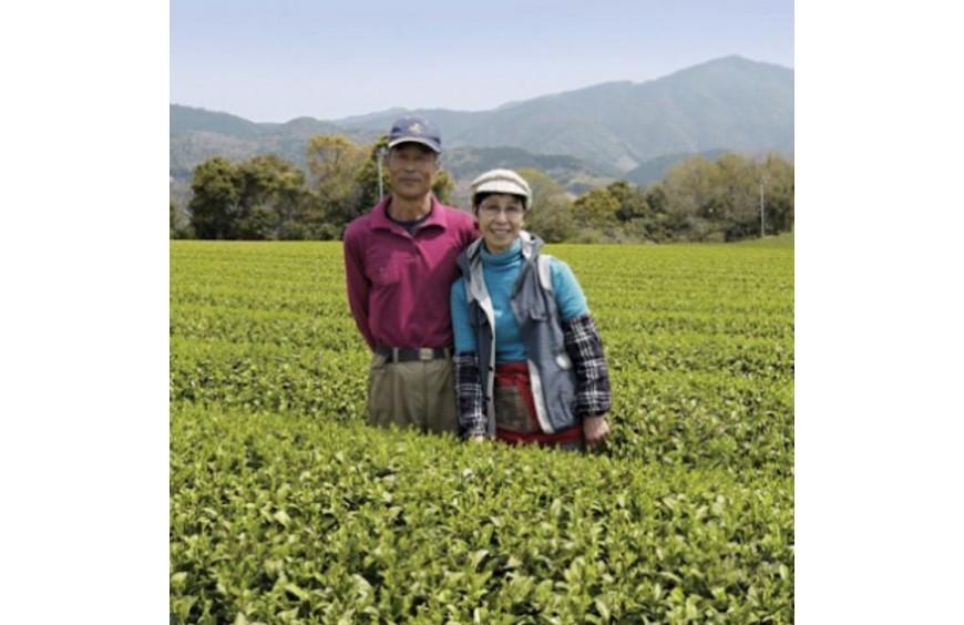 Jardin de thé BIO de la famille Morimoto