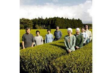 Jardin de thé BIO de la famille Watanabe